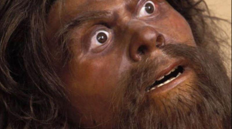 Confirman que los hombres de Neandertal eran caníbales
