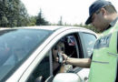 Verano: detectaron a más de 600 conductores con alcoholizados